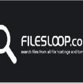 filesloop premium account